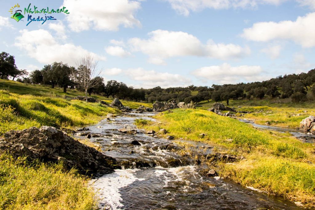 Nuestros ríos
