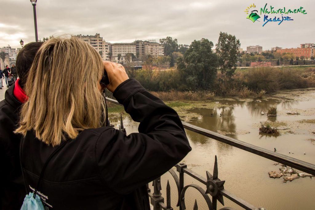 Badajoz, ciudad de las aves