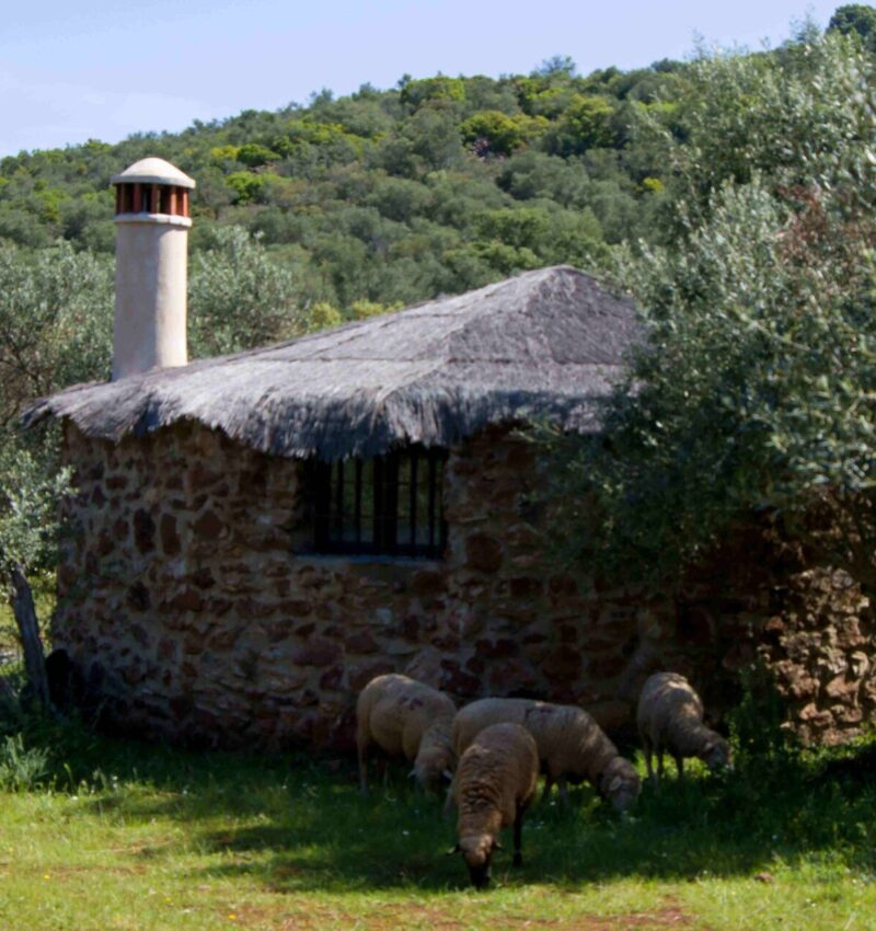 Badajoz y su Sierra de Alor